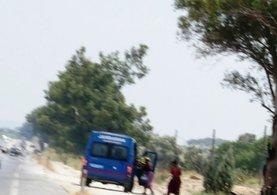 Jandarma yol kenarındaki rezalete el koydu