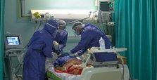Virus tallies up in Egypt, Algeria, Iraq, Jordan, Libya