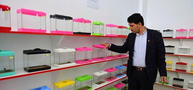 TURKISH ENTREPRENEUR BREEDS SCORPIONS FOR ANTI-VENOM