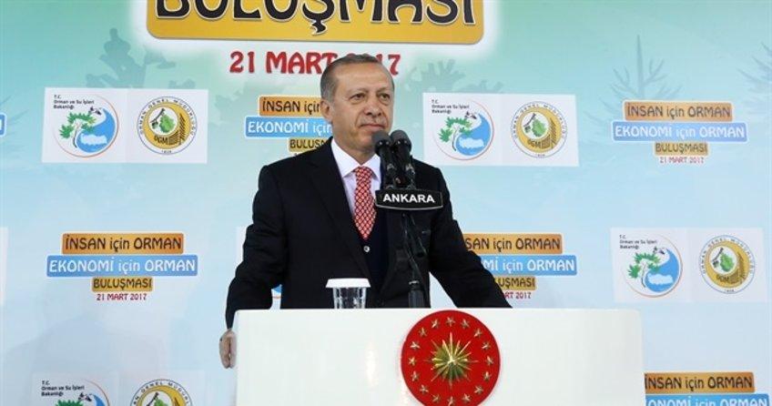 Cumhurbaşkanı Erdoğan: ''Bunun yalanlarının freni yok!'' dedi.