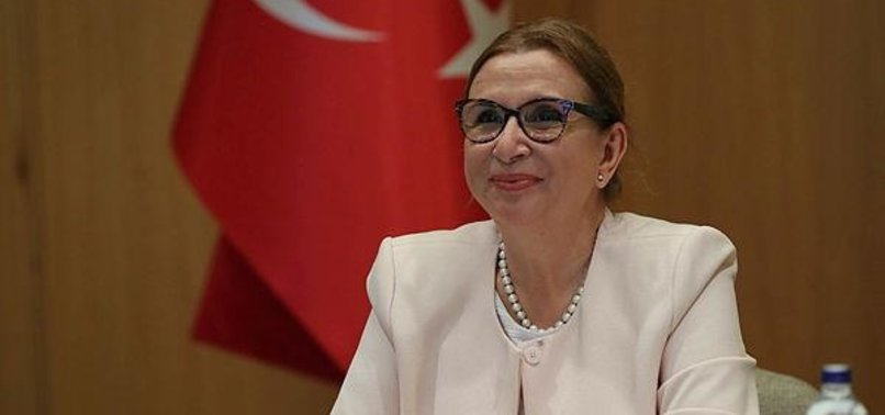 MINISTER PEKCAN: TURKEY TO CONTINUE TO OPPOSE PROTECTIONISM