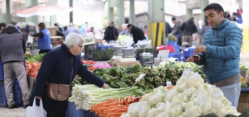 TURKEYS ANNUAL INFLATION RATE AT 10.56% IN NOVEMBER