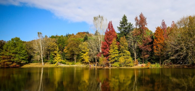 INTO THE WILD: ATATÜRK ARBORETUM A SAFE HAVEN FOR NATURE IN THE HEART OF ISTANBUL