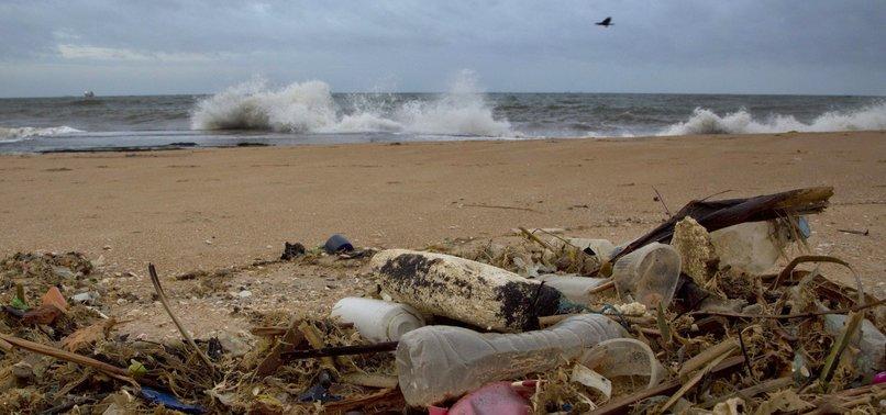 PLASTIC POLLUTION KILLS OVER HALF MILLION CRABS: STUDY