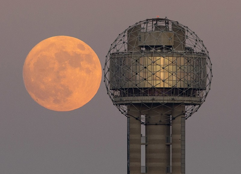 The moon rises behind Reunion Tower in downtown Dallas, Sunday evening, Nov. 13, 2016. (AP Photo)