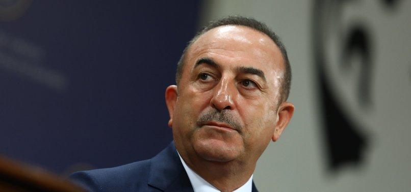 TURKEY SUPPORTED ALL PUSHES TO SOLVE CYPRUS ISSUE: TURKISH FM ÇAVUŞOĞLU