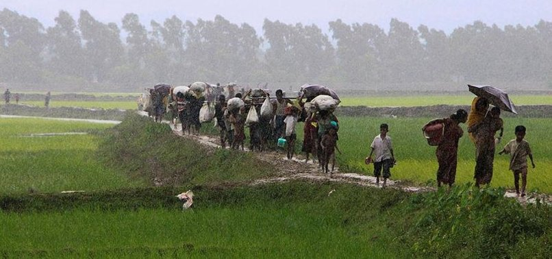 GLOBAL COMMUNITY BURIES HEAD IN SAND OVER ROHINGYA