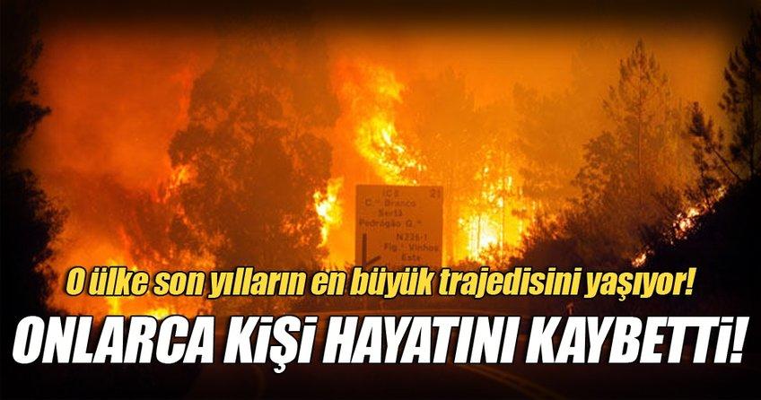Portekiz'de orman yangını: 43 ölü