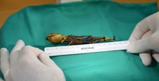 Mystery of 'alien skeleton' finally solved