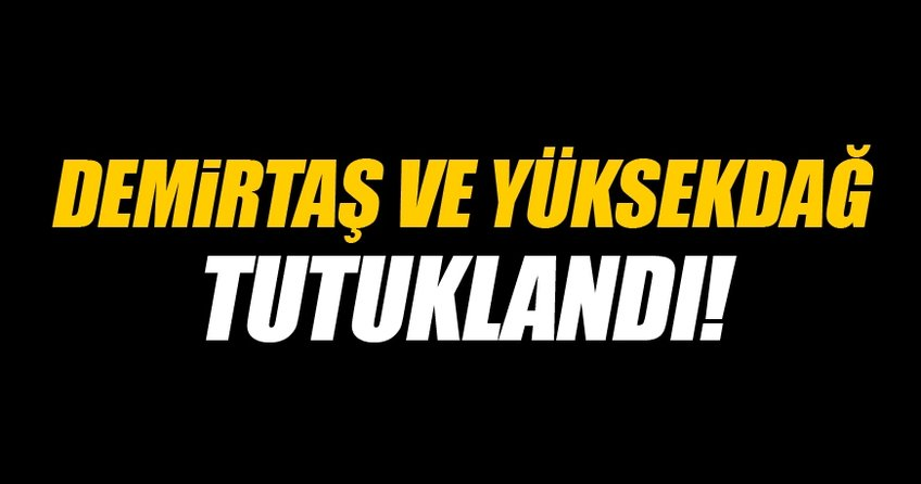 Selahattin Demirtaş ve Figen Yüksekdağ tutuklandı!