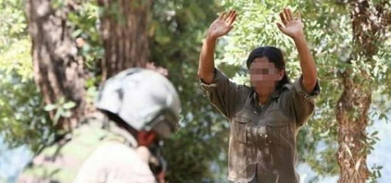 3 PKK TERRORISTS SURRENDER TO TURKISH SECURITY FORCES