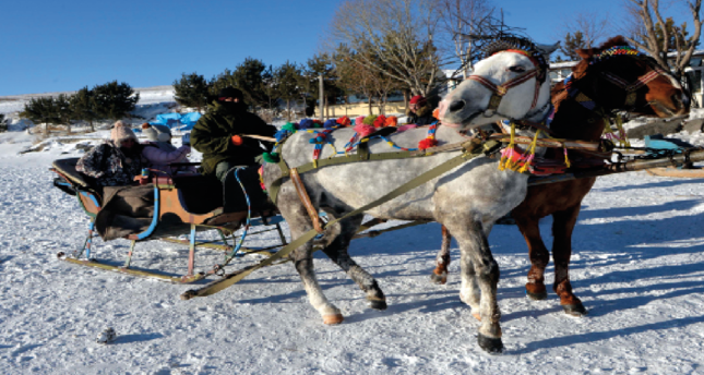 A must for winter tourism: Sleigh tours at Cıbıltepe Ski Resort