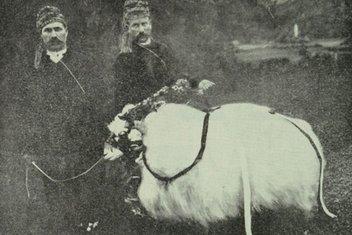 Osmanlıda Kurban Bayramı