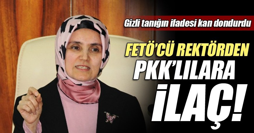 FETÖ'cü rektör Saraç'tan terör örgütü PKK'lılara ilaç