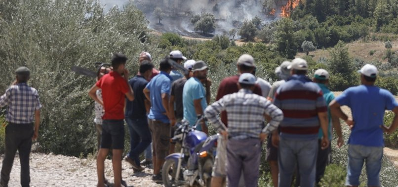 2 more die in southern Turkey forest fires, death toll at 6