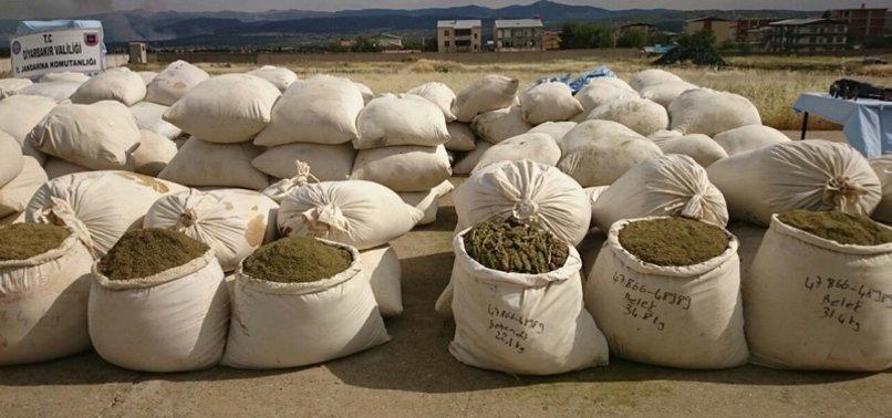PKK TERROR GROUP EARNS $1.5B ANNUALLY FROM DRUGS: MINISTER SOYLU