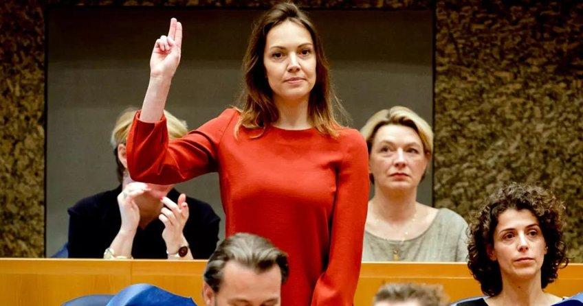 İşte Hollanda'nın demokrasi anlayışı