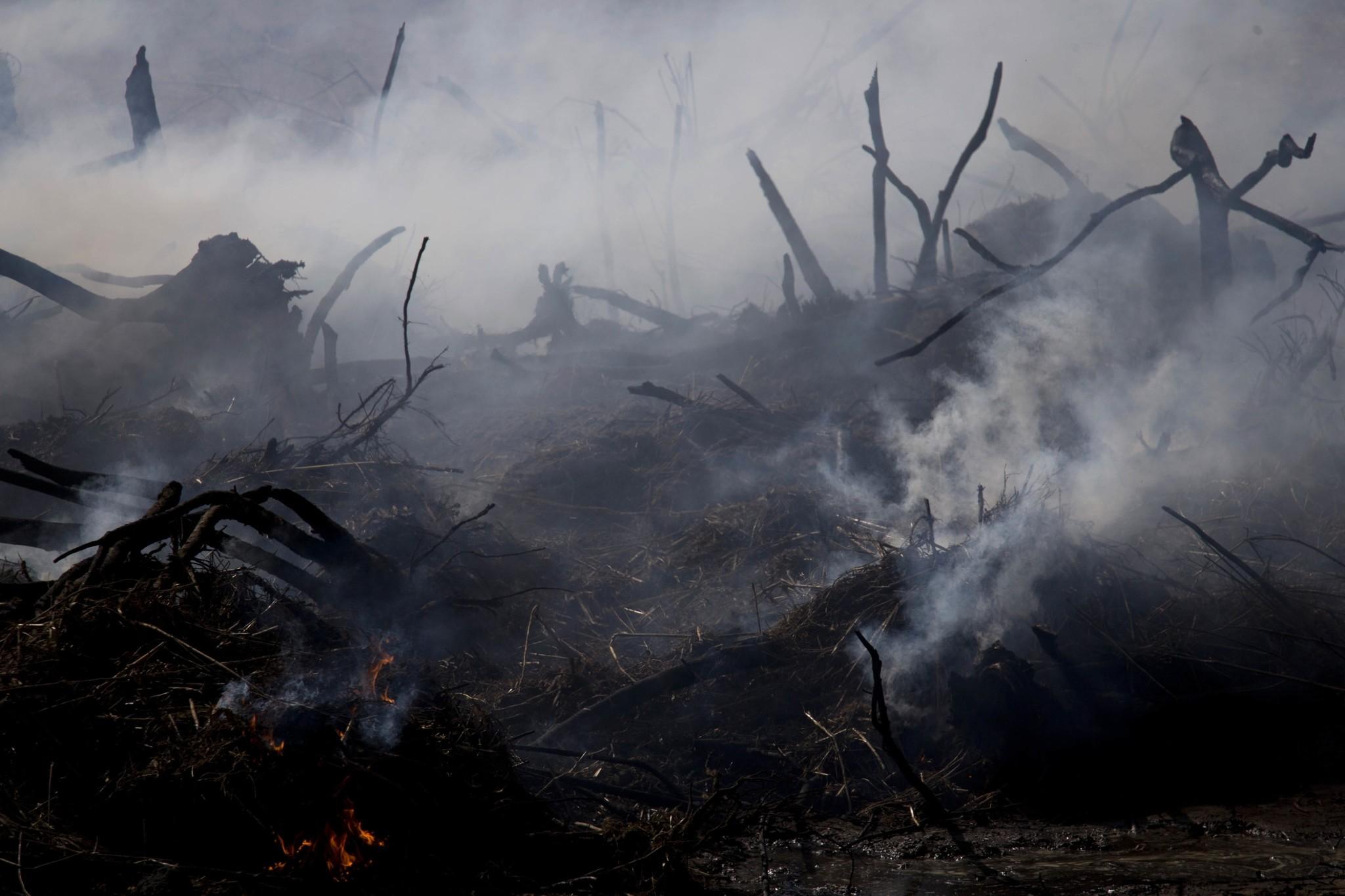 A fire still smolders from a forest fire near Hadera, Israel, Sunday, Nov. 27, 2016. (AP Photo)