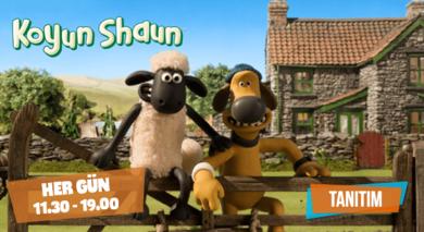 Koyun Shaun | Mayıs Tanıtım