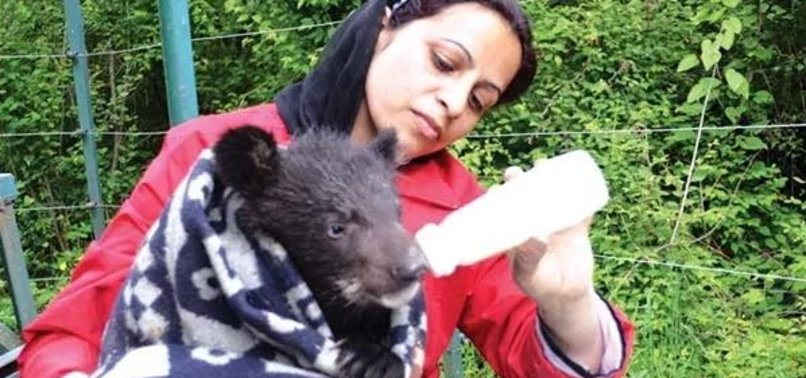 KASHMIRI WOMAN INSPIRES WITH 20 YEARS OF SERVICE TO WILDLIFE
