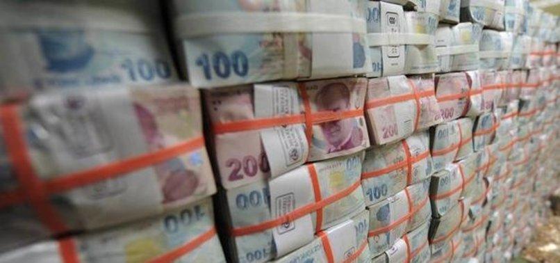 TURKEYS BUDGET POSTS $450M SURPLUS IN JANUARY