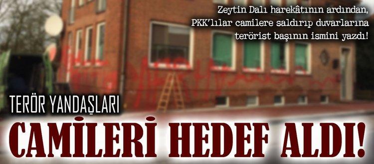 Terör yandaşları camileri hedef aldı