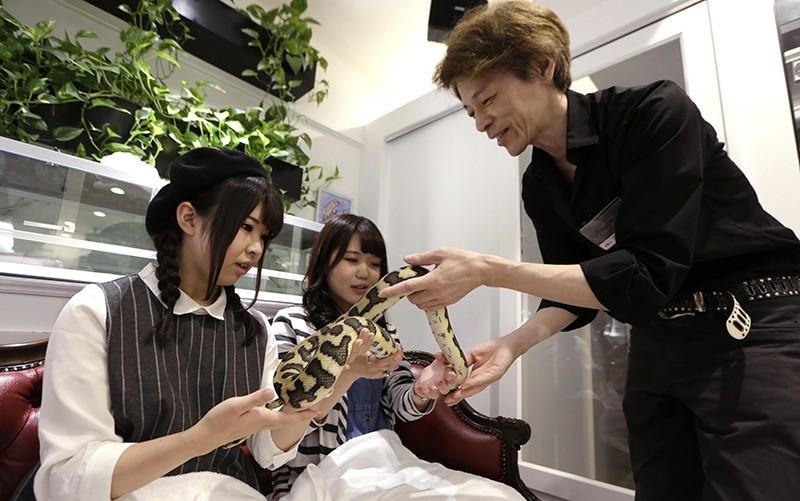 In this Sept. 30, 2016 photo, Hisamitsu Kaneko, manager of the Tokyo Snake Center cafe, right, passes a snake to Miyu Nakajima, left, and Nina Arakawa, center, at Tokyou201au00c4u00f4s Snake Center, in Tokyo (AP Photo)