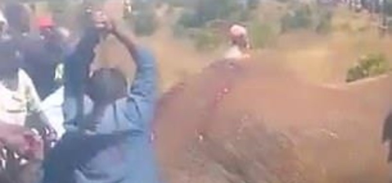 VIDEO OF BRUTAL ELEPHANT KILLING CAUSES OUTCRY IN KENYA