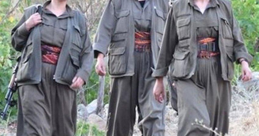 Hakkari'nin Çukurca ilçesinde kadın PKK'lı, koca FETÖ'cü