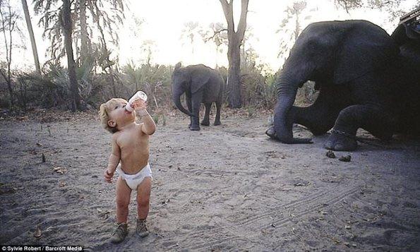 Tippi: Doğanın Ortasında Korkusuz Bir Kız Çocuğu Yetiştirmenin En İnanılmaz Örneği