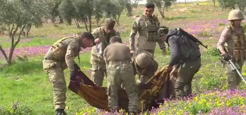 SYRIAN KILLED BY MINE PLANTED BY YPG/PKK TERRORISTS