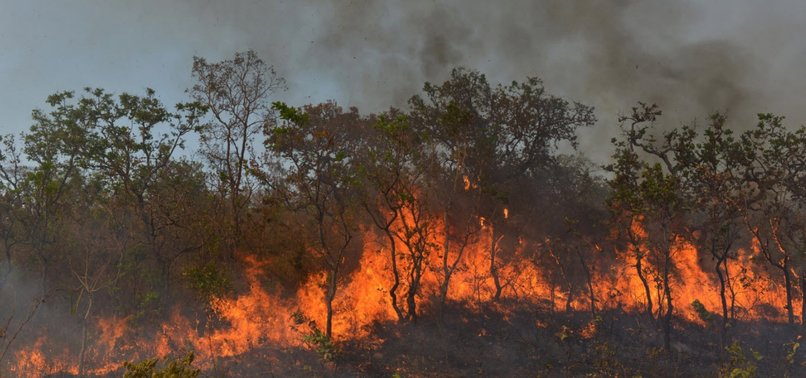 AMAZON RAINFOREST FIRES CANNOT BE DEFINED AS NATURAL