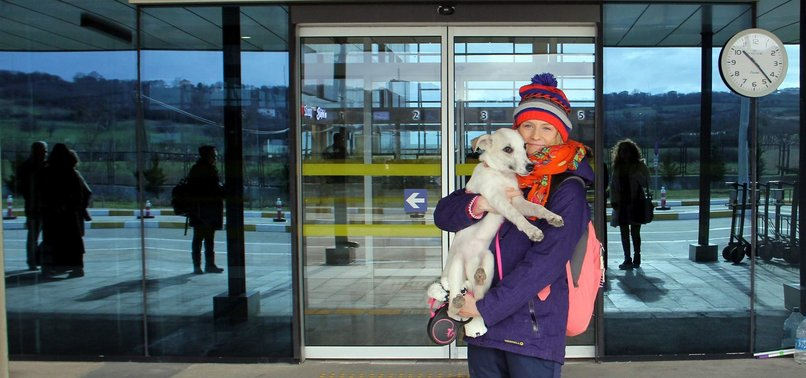 GERMAN VET STUDENT GIVES TURKISH STRAY DOG NEW LIFE