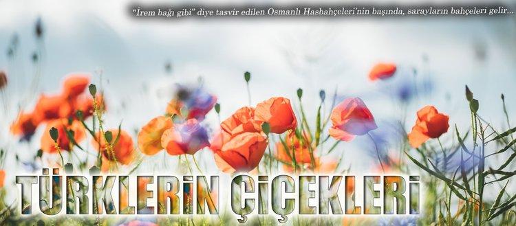 Türklerin çiçekleri