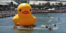 Missing giant yellow duck found in Australia