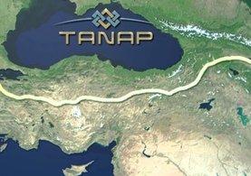 TANAP Genel Müdürü Düzyol: 'Proje zamanından önce bitecek' dedi