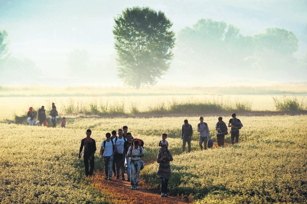 Migrants walking through a field to cross the border from Greece to Macedonia near the Greek village of Idomeni, Aug. 29, 2015. (AFP Photo)