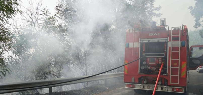 WILDFIRES RAGE IN SOUTHERN ITALY, MAN DIES