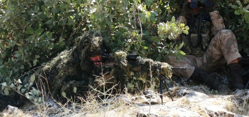 Turkey neutralizes 3 YPG/PKK terrorists in northern Syria