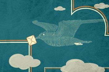 Posta güvercinleri yollarını nasıl buluyorlardı?