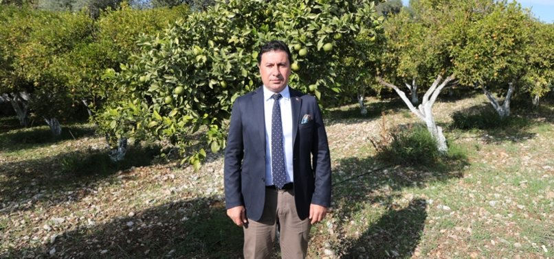 TURKEY'S BODRUM RESORT TOWN FOCUSES ON AGRITOURISM