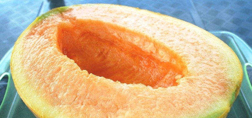 2 JAPANESE MELONS SELL FOR RECORD $45,500