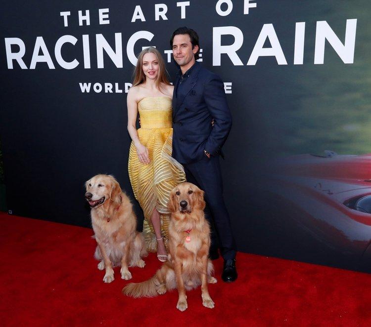 Amanda Seyfried'ın Oscar de la Renta şıklığı