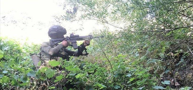 TURKEY NEUTRALIZES 2 PKK TERRORISTS IN NORTHERN IRAQ
