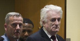 Karadzic gets life in prison for genocide, war crimes