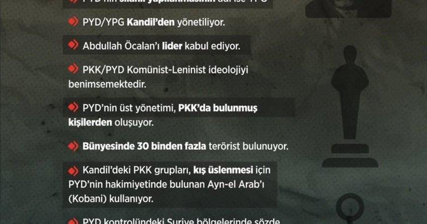 ABD açıkladı: 'Recep Tayyip Erdoğan haksız değil, Öcalan'ın kardeşi 'PYD'yi PKK kurdu' dedi!