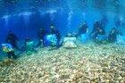 Suyun altından tuvale yansıyanlar