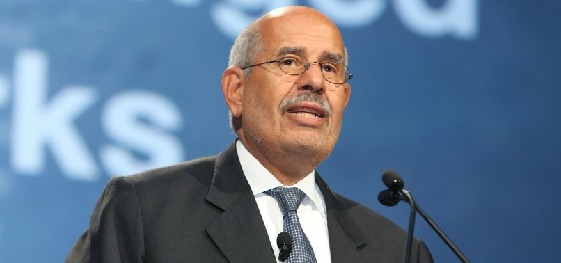 EGYPTS FORMER VICE PRESIDENT CALLS FOR TALKS WITH TURKEY AND IRAN