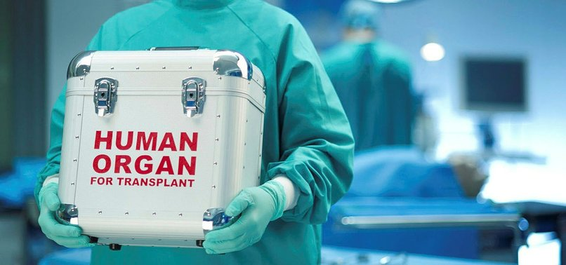 ONE LIVER, TWO LIVES: SINGLE ORGAN TRANSPLANT SAVES TWO