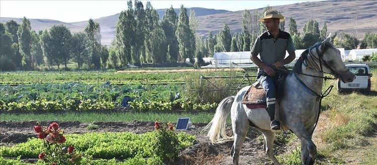 Erzurum'da devlet desteğiyle artan sebze üretimi
